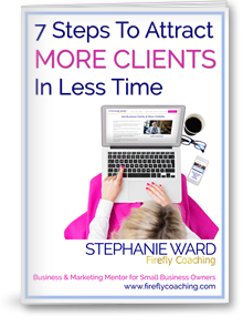 7 Steps to Attract More Clients in Less Time New Cover